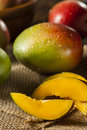 Organic colorful ripe mangos on a background Stock Photo
