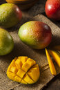 Organic colorful ripe mangos on a background Royalty Free Stock Image