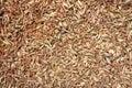 Organic dry lemongrass Cymbopogon flexuosus big cut. Macro close up background texture