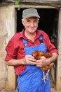 Organic farmer holding chicken under his arms Royalty Free Stock Image