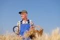 Organic farmer standing in a wheat field looking at the crop model is real farm worker Stock Photography