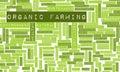 Organic Farming Royalty Free Stock Photo