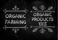 Organic farming. Organic products 100 . Hand drawn white typographic design elements