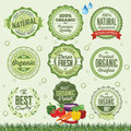 Organic Food Badges, Labels and Elements. Royalty Free Stock Photo