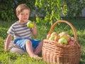 Basket of apples near kid. Baby eating apple outdoor.