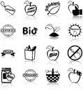 Organic food icons related silhouettes Stock Image
