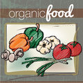 Organic Food illustration Stock Photos