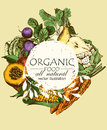Organic food menu. Set of vegetables, fruits and spices. Farm meal. Poster. Menu
