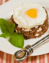 Organic, fresh, Quinoa, tomato, basil mozzarell and egg Royalty Free Stock Photo