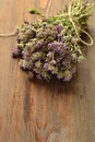 Organic fresh thyme on a wooden table vertical Stock Images
