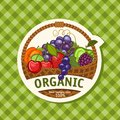 Organic fruit basket vector illustration Royalty Free Stock Photos