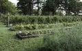 Záhradníctvo v hory