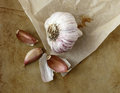 Organic garlic on an old rustic stone chopping board Royalty Free Stock Images