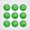 Organic Gluten Sugar free Eco Bio Vegan Vegetarian Eco Bio Natural label. Food logo icons. Vector green and white sticker signs