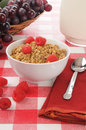 Organic granola with raspberries Stock Image