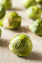 Organic green brussel sprouts ready to cook Royalty Free Stock Photo