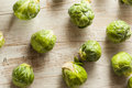 Organic green brussel sprouts ready to cook Royalty Free Stock Images