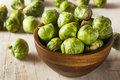 Organic green brussel sprouts ready to cook Stock Image