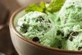Organic Green Mint Chocolate Chip Ice Cream Royalty Free Stock Photo