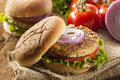 Organic grilled black bean burger with tomato and lettuce Royalty Free Stock Photos