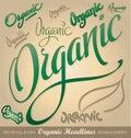 Organic headlines, hand lettering set (vector) Royalty Free Stock Image