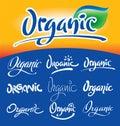 Organic headlines, hand lettering set (vector) Stock Photography