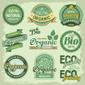 Organic labels set of eco and bio and elements Stock Photography