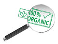 Organic Magnifying Glass Stock Photography