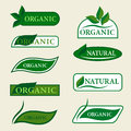 Organic natural logo design template signs with green leaves.
