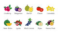A Organic nature health fruit isolated vector collection set