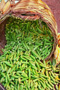 Organic Okra Spilling From A Basket Royalty Free Stock Photo