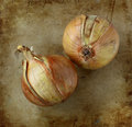 Organic onions on an old rustic stone chopping board Stock Photo