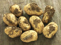 Organic potatoes Stock Images