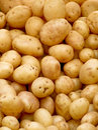 Organic potatoes Royalty Free Stock Image