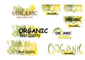Organic product symbols nature green tone color watercolor look Royalty Free Stock Photo