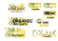 Organic product symbols nature green tone color watercolor look Royalty Free Stock Photo