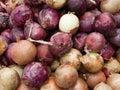 Organic purple and white onions Royalty Free Stock Photo