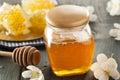 Organic Raw Golden Honey Comb Royalty Free Stock Photo