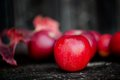 Organic red apples from autumn harvest in agriculture theme against wooden background Royalty Free Stock Photos