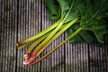 Organic rhubarb stalks with leaves on rustic woo, view from abov Royalty Free Stock Photo