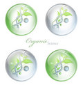 Organic Science glossy balls Royalty Free Stock Photography