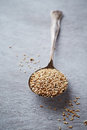 Organic sesame seeds on a spoon unhulled an old Stock Photography