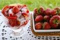 Organic strawberries with cream Royalty Free Stock Photos