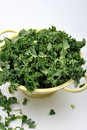 Organic tender leaf curly kale Stock Photography