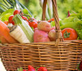Organic vegetables wicker basket is full with Stock Image