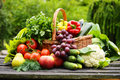 Organic vegetables in wicker basket in the garden fresh Royalty Free Stock Photography
