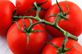 Organic vine tomatoes shot against a white background Royalty Free Stock Photos