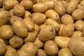 Organic young potatoes  on market Royalty Free Stock Photo