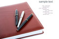 Organisateur en cuir un stylo-plume Photo stock
