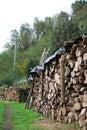 Organised cut wood Royalty Free Stock Photo